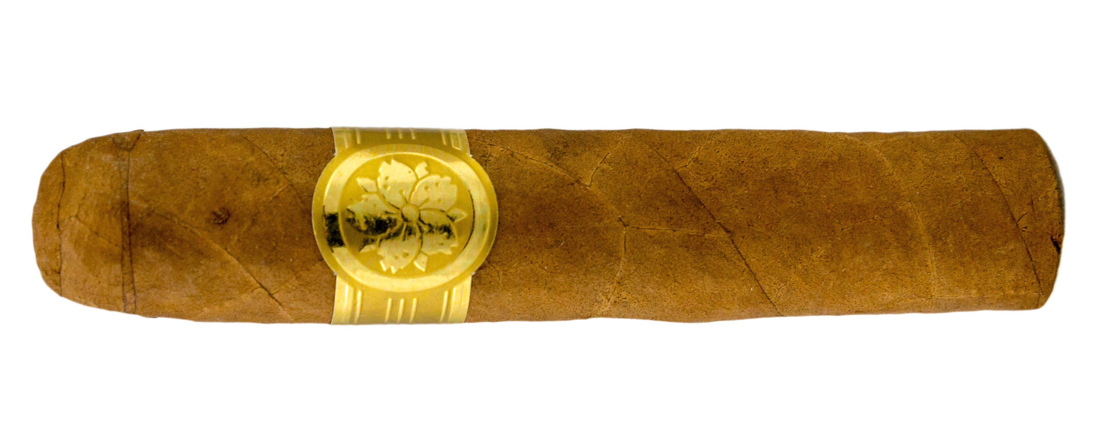 Blind Cigar Review: Room 101 | Master Collection Two Roxxo